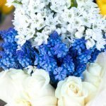 00111-carlsonstock-White and Blue Flower Bouquet